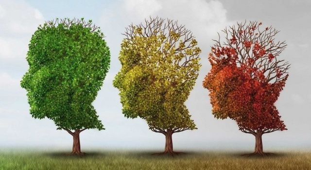 Koje telesne sisteme pogađa Alchajmerova bolest?