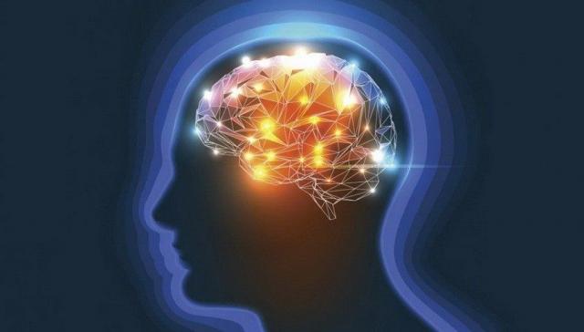 Najbolje biljke, vitamini i minerali za nervni sistem